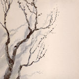 Watercolor painting. Bare branches of an old tree Stock Photos