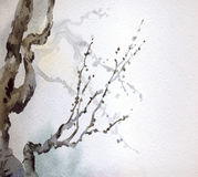 Watercolor painting. Bare branches of an old tree Royalty Free Stock Images