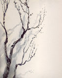 Watercolor painting. Bare branches of an old tree Royalty Free Stock Photo