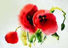 Watercolor painting of beautiful flowers Royalty Free Stock Photography