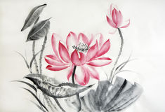 Watercolor painting of big lotus flower Stock Photos