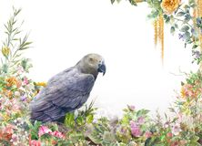 Watercolor painting with bird and flowers, on white. Background royalty free stock photo