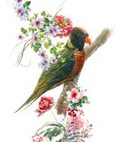 Watercolor painting with bird and flowers, on white background. Royalty Free Stock Photography