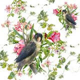Watercolor painting with birds and flowers, seamless pattern on white background. Royalty Free Stock Photography