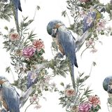 Watercolor painting with birds and flowers, seamless pattern on white background. Watercolor painting with birds and flowers, seamless pattern on white stock illustration