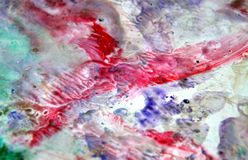 Blue red violet silvery spots pastel colors, bright pastel paint acrylic watercolor background, colorful texture. Watercolor painting bright fluid spots abstract stock images