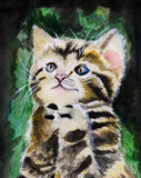 Watercolor painting cat Stock Photos