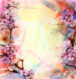 Watercolor Painting Cherry blossoms, Japanese cherry, Pink Sakura Stock Image