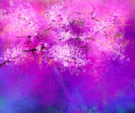 Watercolor painting Cherry blossoms Stock Photo