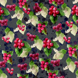 Watercolor painting cherry & Ilex Annual 2560/2017 Seamless desi. Gn pattern is a natural markings.A red fruit, a fruit for Christmas.Scene background texture Royalty Free Stock Photo