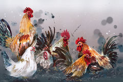 Watercolor painting chicken Animal Annual 2560/2017 Place stood Stock Photos