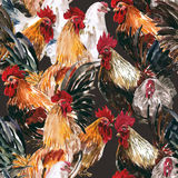 Watercolor painting chicken Animal Annual 2560/2017 Seamless des. Ign pattern is a natural markings.On a brown background Royalty Free Stock Photography