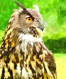 Watercolor painting of Eagle Owl. Watercolor digitally generated painting of the Eagle Owl Bubo Bubo Stock Images