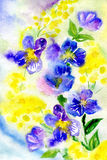 Watercolor painting of flowers. Watercolor flowers of a violet and mimosa Royalty Free Stock Photography