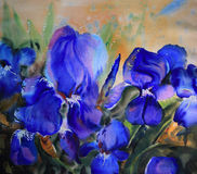 Watercolor painting flowers Stock Image