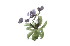 Watercolor painting of flowers bouquet aquarelle drawing Royalty Free Stock Photo