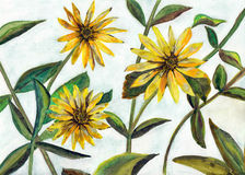 Watercolor painting flowers. Modern watercolor painting yellow flowers Royalty Free Illustration