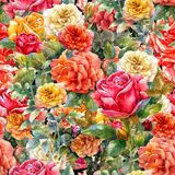 Watercolor painting of flowers, rose. Seamless pattern Royalty Free Stock Photos