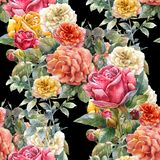 Watercolor painting of flowers, rose , seamless pattern. On dark background Stock Image