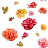 Watercolor painting of flowers, rose , seamless pattern on white background. Stock Image