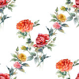 Watercolor painting of flowers, rose , seamless pattern on white background. Royalty Free Stock Photo