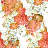 Watercolor painting of flowers, rose , seamless pattern on white background. Stock Photos