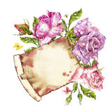 Watercolor painting Greeting cards. Rose background, watercolor composition. Flower backdrop. Isolated illustration on. Watercolor painting Greeting cards. Rose Royalty Free Stock Images