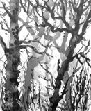 Winter Trees in Mist. Watercolor painting.  Hand drawn illustration. Winter forest scene. Monochrome image of old trees without leaves in mist Royalty Free Stock Image