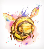 Watercolor painting, honey bee Stock Photography