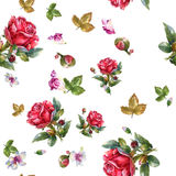 Watercolor painting illustration of Red rose , seamless pattern Stock Photos