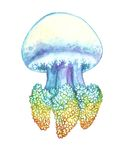 Watercolor painting of jellyfish Royalty Free Stock Photography