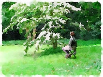 Watercolor painting of a lady sitting on a chair under a tree wi. Digital watercolor painting of a lady sitting on a chair under a tree with white flowers by a Stock Photography