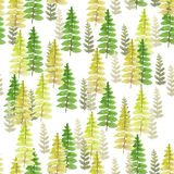 Watercolor painting Leaf fern pattern Seamless design pattern. On a white background Royalty Free Stock Photography
