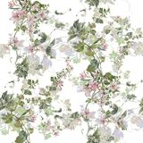 Watercolor painting of leaf and flowers, seamless pattern on white background. Watercolor painting of leaf and flowers, seamless pattern on white background Stock Photos