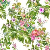 Watercolor painting of leaf and flowers, seamless pattern on white. Background Stock Images