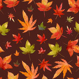 Watercolor painting leaf maple orange red style collage arranged Stock Photography