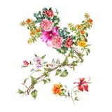 Watercolor painting of leaves and flower, on white background. Watercolor painting of leaves and flower, on white background Stock Photography