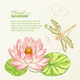 Watercolor painting of lotus and dragonfly. stock illustration