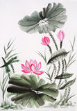 Watercolor painting of lotus flower Stock Image