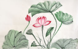 Watercolor painting of lotus leaves and flower Royalty Free Stock Image