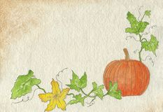 Watercolor painting of orange Halloween pumpkin. Royalty Free Stock Photos