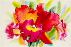 Watercolor painting orange pink red color of orchid flower. Stock Photos