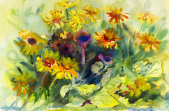 Watercolor painting original flower colorful of yellow Mexican Diasy flowers. Beauty and emotion in abstract background Royalty Free Stock Images
