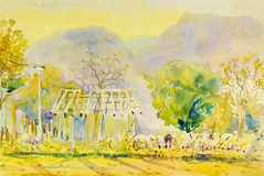 Watercolor painting original landscape  colorful of buffalo paddock Royalty Free Stock Images