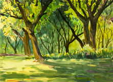 Watercolor painting original landscape colorful of forest park Royalty Free Stock Photography