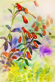 Watercolor painting original landscape colorful of garden flower royalty free illustration