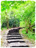 Watercolor painting of a path in the woods. A digital watercolor painting of a path with steps in the woods Royalty Free Stock Photo