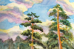 Watercolor painting of Pine trees and clouds sky. Background Royalty Free Stock Images