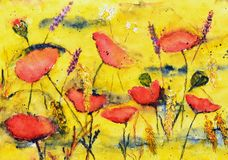 Watercolor painting, poppies Stock Photo