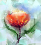 Watercolor painting red poppy flower Royalty Free Stock Images